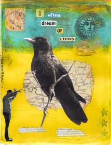 crow _edited