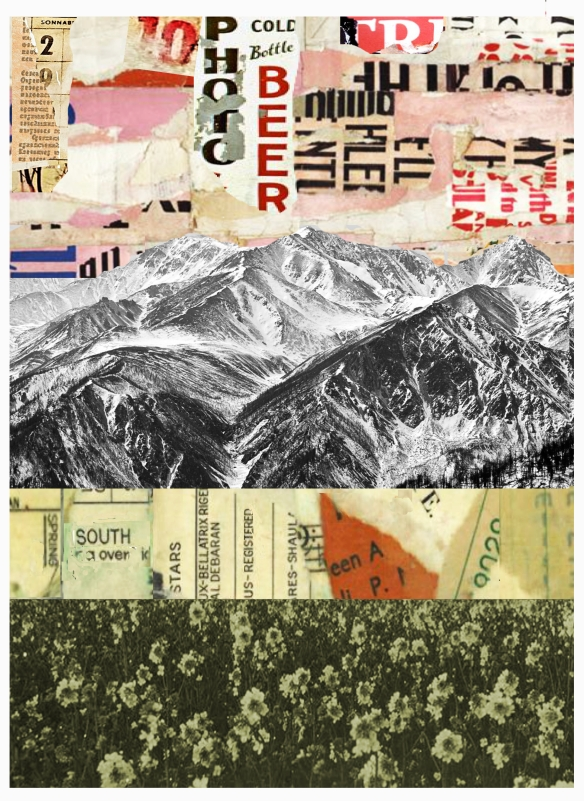 South Facing collage